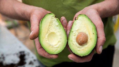 POPULÆR: Avokado ble raskt en svært populær frukt her til lands.