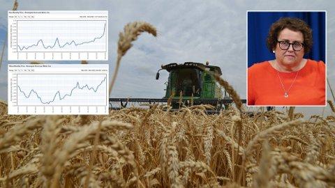 Flere land er i ferd med å begrense eksporten av landbruksvarer, og Norge er avhengig av import både for mat til mennesker og dyr. Det gir høyere priser, men landbruksministeren er ikke bekymret for tilgangen til mat i Norge.