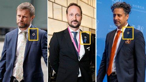 FN-PINS: Stadig flere statsråder (og kongelige) har den senere tiden dukket opp med FN-pins som symboliserer bærekraftsmålene.