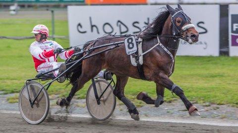 Ubeseirede B.B. Viking blir stor favoritt i V65-6 på Leangen i dag, sammen med sin faste kusk Thomas Mjøen. Foto: HM.Auran/hesteguiden.com