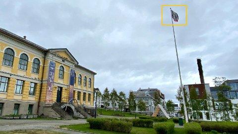 PROVOSERER: Her vaier det norske flagget med oljesøl, noe som provoserer mange. - Men det er fullt lovlig, sier flaggkjenner og statsviter Jan Oskar Engene.