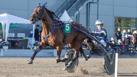 Another Creation og Kristian Malmin er store favoritter i V75-3 på Jarlsberg onsdag kveld. Foto: Morten Skifjeld/Hesteguiden.com