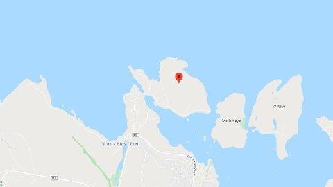 LIVLØS: En person har blitt funnet livløs på Løvøya i Horten.
