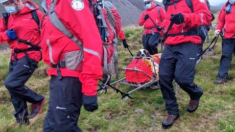 REDDET: Frivillige medlemmer av Wasdale Mountain Rescue Team reddet fredag den 55 kilo tunge Santbernhardshunden Daisy ned fra Scafell Pike, Englands høyeste fjell.