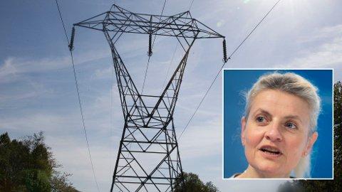 KAN BLI LURT: Inger Lise Blyverket i Forbrukerrådet advarer mot lokketilbud på strøm.