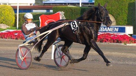 Fantomet og kusk Eirik Høitomt. Onsdag kjører Adrian Solberg Akselsen. Foto: Anders Kongsrud/www.hesteguiden.com.