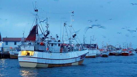 Ved inngangen til 2020 var det registrert drøyt 11.000 fiskere i Norge ifølge tall fra SSB og Fiskeridirektoratet. Kanskje du er en av dem og vurderer jobbytte?