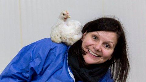 KYLLING: Dyrevernalliansens Live Kleveland med en Hubbard-kylling.