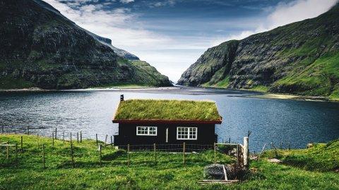 HYTTEDRØM: 170.000 nordmenn ønsker å kjøpe hytte ved sjøen eller på fjellet. - Tenk deg om to ganger, er rådet fra forbrukerøkonom Cecilie Tvetenstrand.