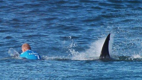 Bildet viser et haiangrep mot surferen Mick Fanning i Jeffreys Bay i 2015. Fanning kjempet tilbake mot haien og slapp unna angrepet uskadet. Alle er ikke like heldige, og 2020 har blitt det verste året siden 1934.