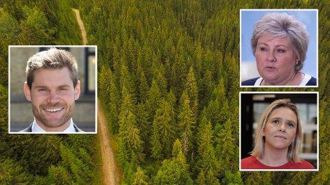 Arbeiderpartiets Nils Kristen Sandtrøen plasserer mye av skylden for at norsk skog ender opp hos utenlandske eiere hos statsminister Erna Solberg (H) og tidligere landbruksminister Sylvi Listhaug (Frp).
