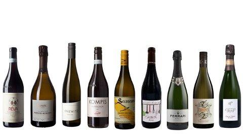 SPRIK OG MORO: Barbera, champagne og riesling er noe av det vinpanelet anbefaler til lutefisk.