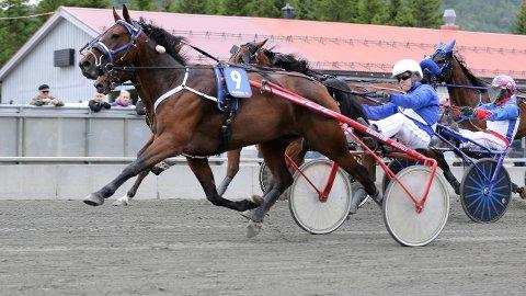 Mats Gunnar Ringberg er aktuell i kveldens V65-omgang fra Harstad. foto_Robin Andreassen_hesteguiden.com