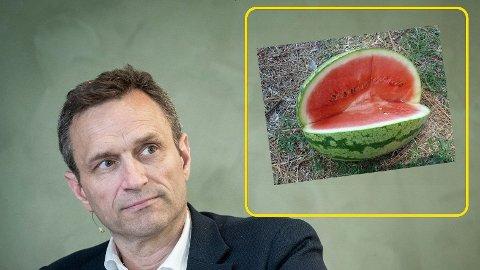MILJØPARTIET DE GRØNNE: Grønne utenpå, røde inni. Nå velger MDG-nestleder Arild Hermstad side i politikken.