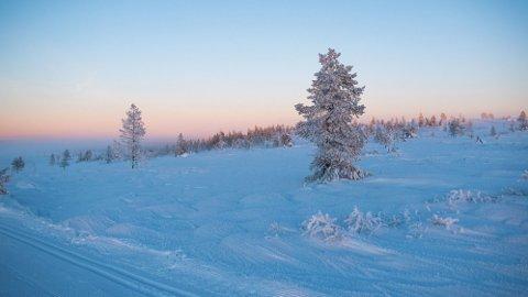 Vinterkulden har bidratt til at strømprisen har steget kraftig i januar.