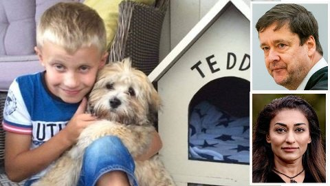 NÆRT FORHOLD: Mathias Stavåsen har hatt et nært forhold til familiemedlemmet Teddy i store deler av sitt liv. Nå går familien rettens vei for å forsøke å stoppe avliving av den lille hunden. Innfelt i bildet: Nettavisens nye spaltist Shabana Rehman og advokat John Christian Elden.