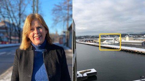 SALTORAMA: Bystyrepolitiker Camilla Wilhelmsen (Frp) i Oslo har selv utsikt mot det enorme veisaltdeponiet på Filipstad fra sin leilighet på Tjuvholmen. - Det er ikke hyggelig, sier hun om saltbruken.