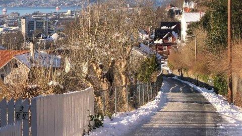 Sublimasjon gjør så snøen forsvinner, uten å smelte, selv om det er minusgrader.