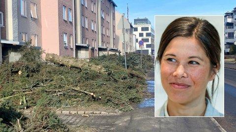 SNAUHOGST: Slik ser det ut i Langbølgen på Lambertseter i Oslo etter at trærne i gata denne uka ble felt for å gi plass til sykkelveier. Miljø- og samferdselsbyråd Lan Marie Berg (innfelt) får kritikk, men forsvarer planene.