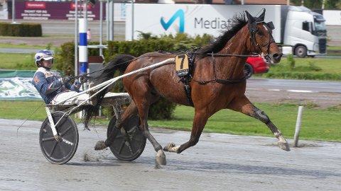 Kenneth Haugstad er aktuell i dagens V75-omgang. Foto: Anders Kongsrud/www.hesteguiden.com.