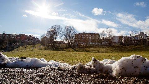 Det ligger an til solfylt vårstemning i Oslo og resten av Østlandet denne uken. Sørlandet får enda bedre vær.