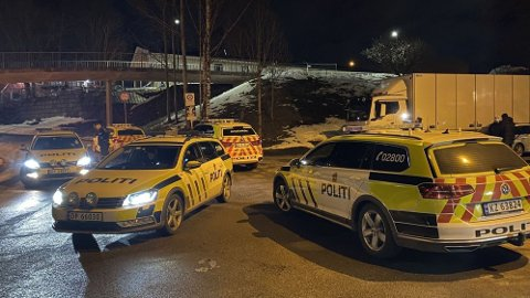STORT POLITIOPPBUD: Politiet hadde litt å stri med tirsdag kveld på Vestli.