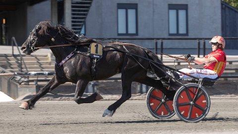 Odd Herakles og Tom Erik Solberg er aktuelle i kveldens V75-omgang på Forus. Foto: Anders Kongsrud/www.hesteguiden.com.