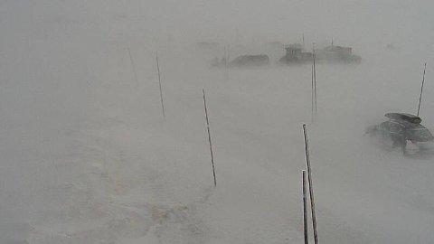 De fleste fjellovergangene i Sør-Norge er stengt andre påskedags morgen på grunn av uvær. Her bilde fra Statens vegvesens webkamera på RV7 Dyranut søndag ettermiddag.