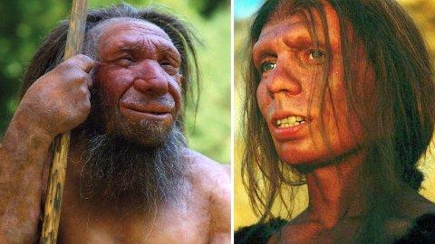 Neandertalerne, som er rekonstruert på disse bildene, er ansett for å være menneskets nærmeste slektning. En liten del av dem lever videre i mange av oss, og kan påvirke hvordan du reagerer på koronaviruset.