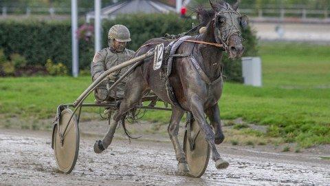 Tor Arne Eggen er aktuell i kveldens V65-omgang. Foto: HM.Auran/hesteguiden.com