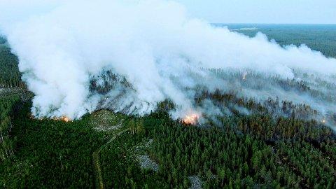 Skogbrannen i Kalajoki tidligere denne uka. Foto: Glenn Hägg / Lehtikuva / NTB
