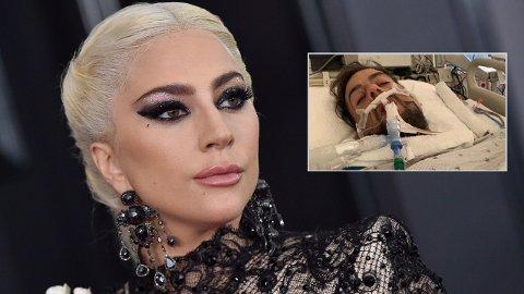 SKUTT: Lady Gagas hundepasser ble skutt i februar og lå over en måned på sykehus.
