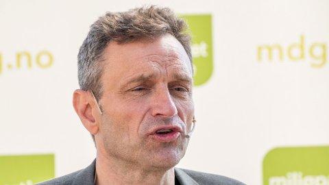 Nestleder i MDG Arild Hermstad.