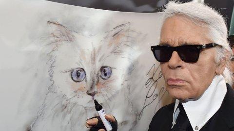 SELGER ALT: Nå skal alle eiendelene til den ikoniske designeren Karl Lagerfeld selger. Til og med dette bildet av katten hans Choupette.