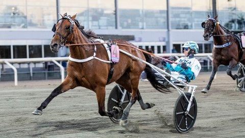 Örjan Kihlström er aktuell i kveldens V86-omgang. Foto Morten Skifjeld/Hesteguiden.com