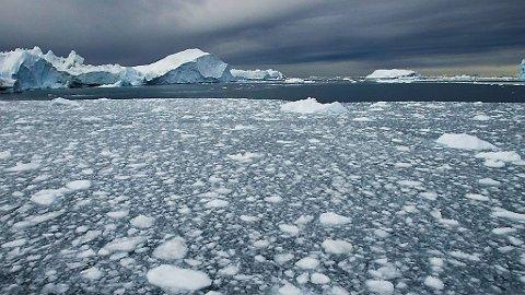 - Norwegia powinna wesprzeć inicjatywę UE i przystąpić do międzynarodowego porozumienia mającego na celu zatrzymanie wydobycia ropy i gazu w Arktyce, mówią politycy SV.