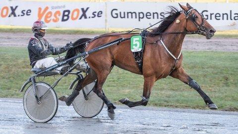 Only Be Kind To Me og Dag Sveinung Dalen blir favoritter i V65-6 på Klosterskogen i kveld. Foto: Morten Skifjeld/Hesteguiden.com