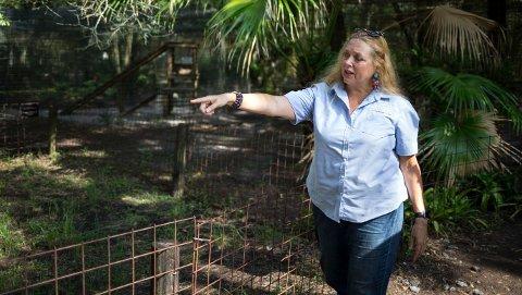 MOTTAR DRAPSTRUSLER: Carole Baskin er redd for å bo i sitt eget hjem etter at hun har motatt drapstrusler etter dokumentarserien «Tiger King».