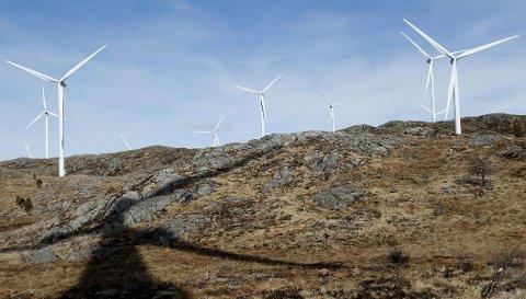 RASERING: Målene i IEA-rapporten om vindkraft og solkraft krever enorme inngrep i naturen.