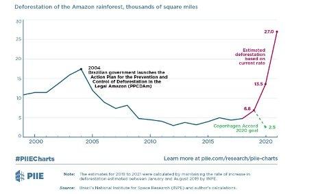 Økonom Monica de Bolle har laget en graf som viser utviklingen i avskoging i Amazons de siste 20 årene. Den røde grafen indikerer utviklingen i avskoging dersom den fortsetter i samme rate som hittil i år.