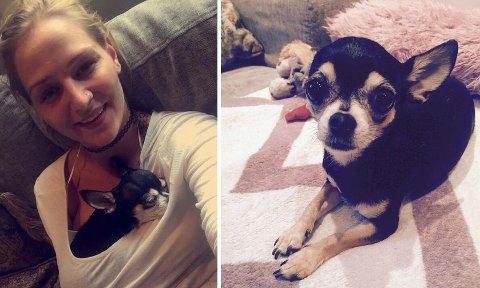 DØDE: Chihuahuaen Leah døde av kraniebrudd og nakkeskader. Nå har politiet henlagt hendelsen som førte til dødsfallet. Matmor Rubi er svært fortvilet, og vil klage på avgjørelsen.