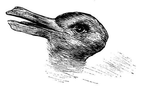 KANIN ELLER AND? Din kreativitet er med på å avgjøre hvor fort du klarer å bytte om på hva slags dyr du ser.