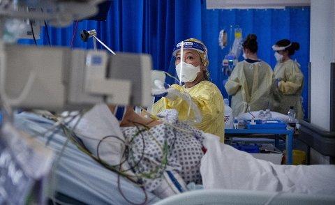 Intensivavdelingen på St. George's Hospital i London opplever stor pågang av covid-19-pasienter. Korona-pandemien har så langt krevd 100.000 menneskeliv i Storbritannia.