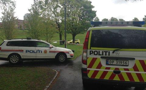 Her i Torshovdalen, like ved Sinsenkrysset i Oslo, ble mannen funnet mandag. Foto: Maria Schiller Tønnessen/Nettavisen