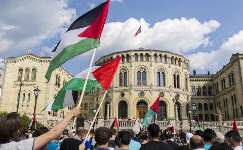Informasjon om Palestina-komiteens arrangement ble lagt ut på komiteens Facebook-sider fredag. Mandag var den fjernet. I tillegg mistet rundt 15 administratorer i tre av komiteens grupper tilgangen til sentrale funksjoner på Facebooks sider. Illustrasjonsfoto: Demonstrasjon mot Israel i 2014 arrangert av Palestina-komiteen.