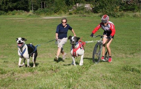 søker: Norsk Trekkhundklubb trenger rekrutter, her Marte Heilemann (til venstre) og Karoline Øksnevad i fullt firsprang. med hhv.Loon, en alaskahusky-vorsteh-pointerblanding, og Pluto, en vorsteh-pointerblanding