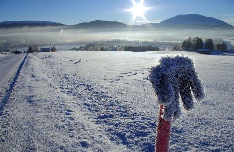 VINTER-VANTE: Gjenglemt fingervott på brøytestikke i Tynset. Natt til torsdag var det minus 27 grader i bygda i Østerdalen.