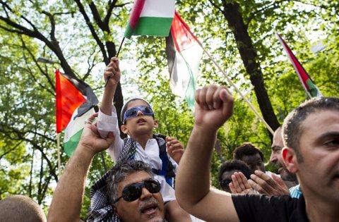 DEMONSTRERTE: Utenriksminister Børge Brende (H) står foran store utfordringer når han i høst skal holde en giverlandskonferanse for gjenoppbygging av Gaza. Bildet er hentet fra en demonstrasjon til støtte for Gazas innbyggere i Oslo i sommer.