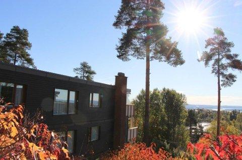 TRÆR SKAPER SPLID: Siden 2007 har et boligsameie og en nabo i Holmenkollen kranglet om trær som tar utsikten.