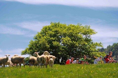 NYT DETTE! Rytterne suste gjennom mye vakkert landskap under den andre etappen i årets Critérium du Dauphiné.